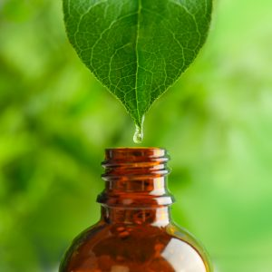 Baobabolja – den föryngrande anti-aging oljan